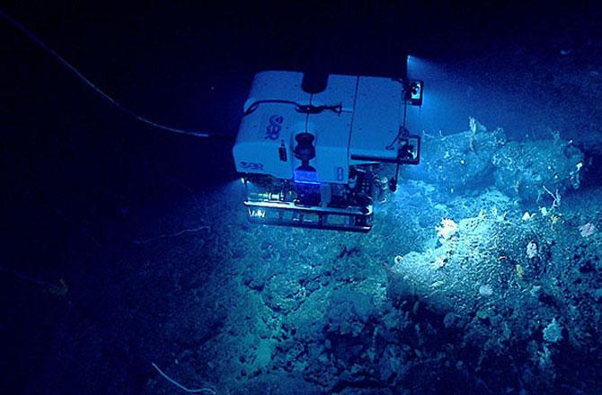 近日,美国国家海洋和大气局的航船俄刻阿洛斯探险者号勘测探索了美国大西洋海底峡谷和新英格兰海山链(NESC),探索期间记录了神奇的深海景象。 据探索发现新闻网报道,近日,美国国家海洋和大气局的航船俄刻阿洛斯探险者号即将完成对美国大西洋海岸未知深海海域生态系统的勘测探索,探索的区域包括海底峡谷和新英格兰海山链(NESC)。以下是该航船在探索期间记录下的神奇的深海景象图片。  探索区域海面状况复杂 海底峡谷和新英格兰海山链(NESC)的海上海面状况十分复杂,从上图中可以看到海域暗流汹涌,非常不适合潜水,但图片却